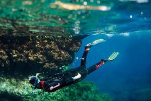 diving Malta