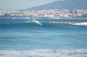 Windsurfing, surfing, Malta, sports, water sports