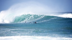 Windsurfing, surfing, Malta, sports, water sports,