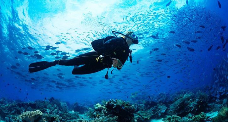 Malta diving